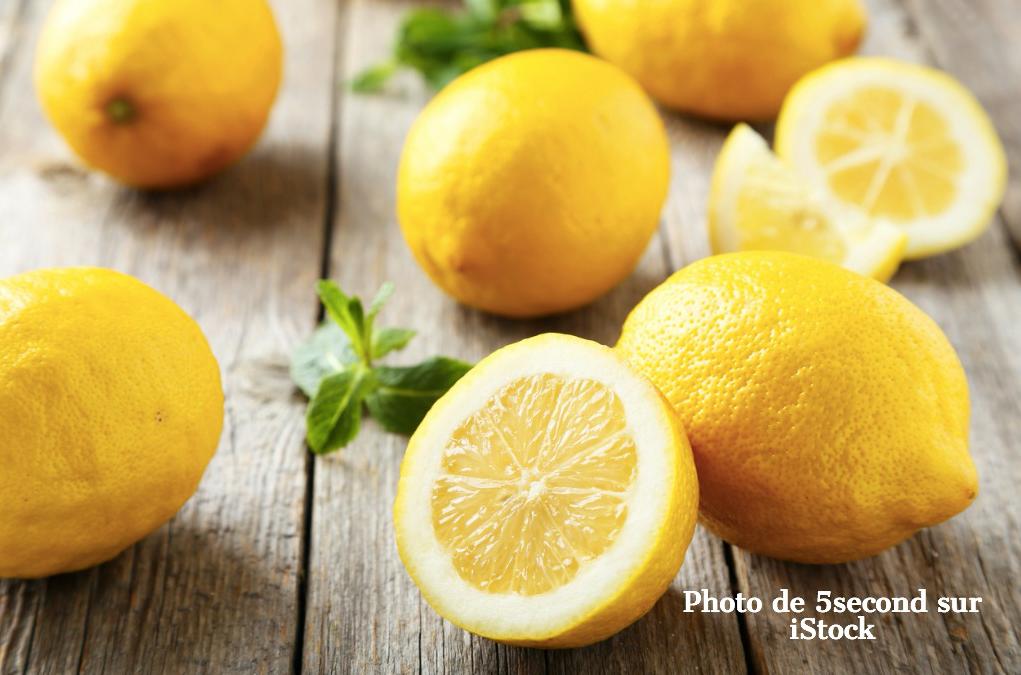 Sauce citronnette